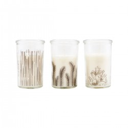 HD, 48C, Candle, Stroke, Pine, Branch, White, Set